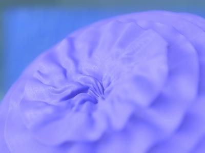 Fabric Flower dribbble animation graphic design soft ui icon motion graphics blendercommunity blender render branding illustration art design abstract 3dart 3d