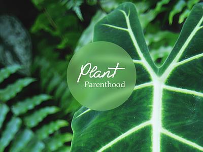 Plant Parenthood minimal web clean design layout green photography business house plants plant care plant typography logo branding