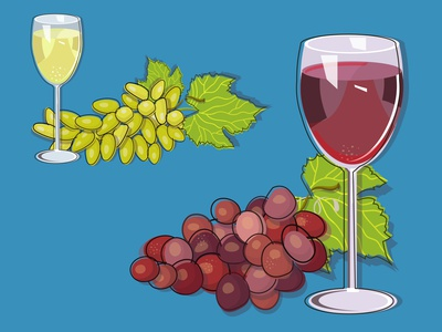 Red and White cartoon vector adobe illustrator design illustration grapes graphic wine glass winery
