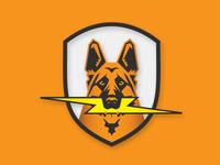 Murphys Badge