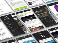 Bcs App Concept