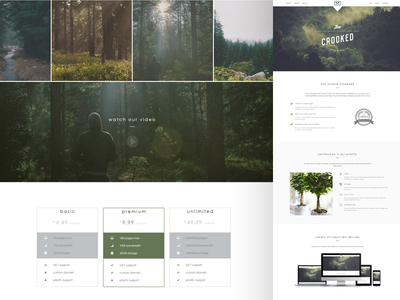 Crooked - Multipurpose Landing Page Template