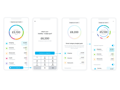 Improving Budgeting Experience finance app circular diagram chart ios bank finance