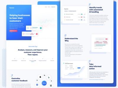 Pyoneer.io - Customer Feedback Analytics