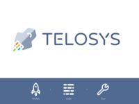 Telosys  - Branding