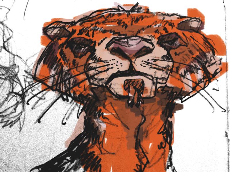 Richard Parker christopher paul illustration tiger line art painting corel painter life of pi boobies