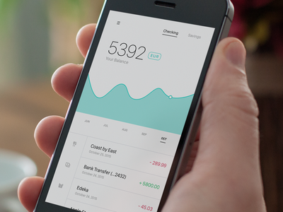 Bank App account wallet money chart ui flat ios app expenses bank