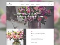Sister Sophy flower shop - website design