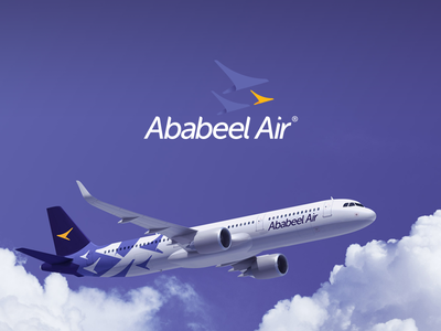 Airlines Branding airplane logo branding airline