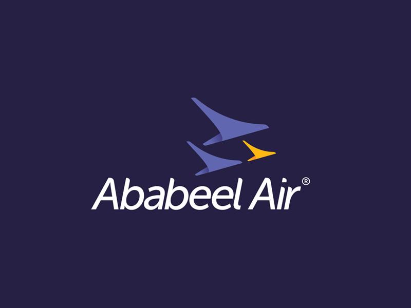 Logo airplane logo branding airline