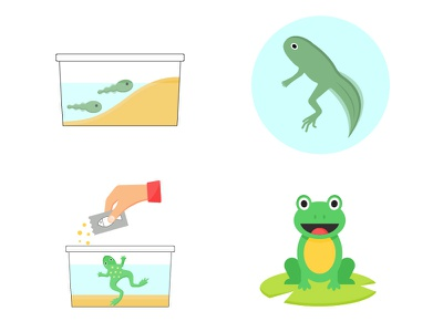 Kids icons illustrations grow a frog out of a tadpole icon set tadpole frog vector kids illustration illustrations vectorart vector art vector illustration flat  design icons adobe illustrator flat illustration