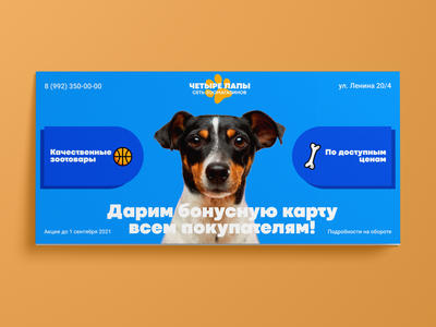 Flyer design for a pet store, v.2. Дизайн еврофлаера, v.2. graphic design design ui