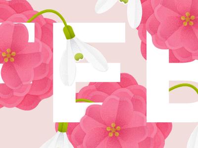 February Flowers