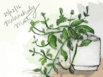 Day 2: Mr. Melancholy Mint