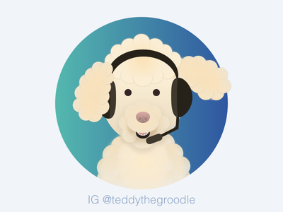 Medipass Customer Service Avatar Special Staff II healthcare melbourme ux ui pet medipass illustration miniature-poodle golden-retriever dog customer-service avatar