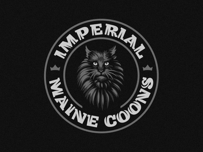 Imperial Maine Coons