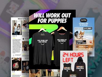 Puppies Digital Marketing typography design graphic design branding social media design social media email marketing email design