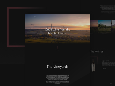 Carrwine - Homepage B2C Website web design dark website homepage design ecommerce b2c ui ux