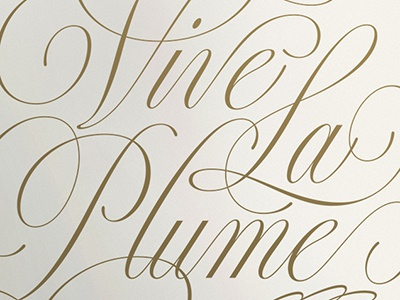 Vive La Plume lettering script sketch drawing calligraphy spencerian pen cursive typography copperplate poster type