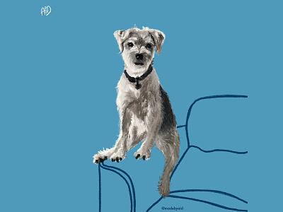 PERCH. dogillustration dog doodle digitalart procreate5 procreate ipad illustration digitalillustration