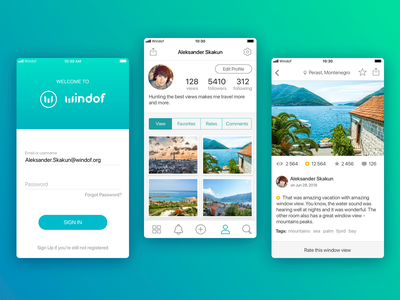 Windof app UI interface icon ux ui photo fjord view window ios app