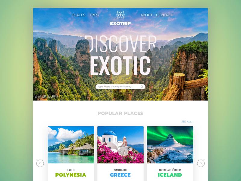 Exotrip Web Design