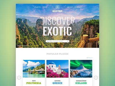 Exotrip Web Design logo site interface ui web design web