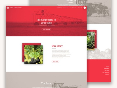 Moore Family Farms Website