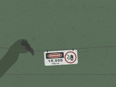 Jurassic Park Wallpaper illustration graphic design