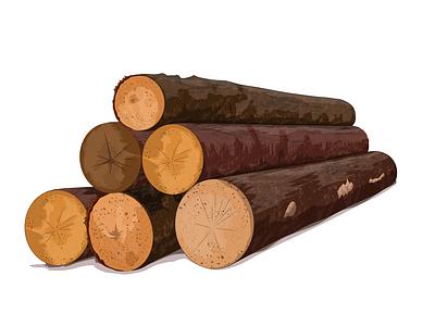 Industria maderera forest krotalon nature tree wood