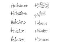 Habanero - Logo Sketches 2 - Script