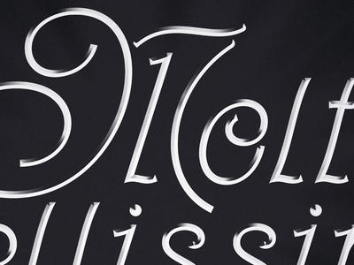 Molto Bellissima (Very Beautiful) - Italian Lettering