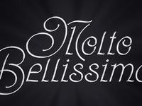 Moltobellissima verybeautiful italianlettering by kylekargov