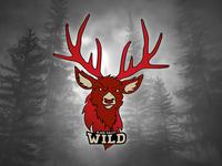 Black Valley Wild