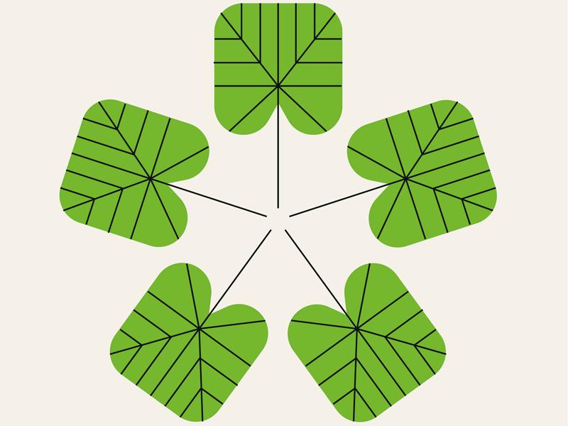 Leaf star green shape leaf nature vector illustration