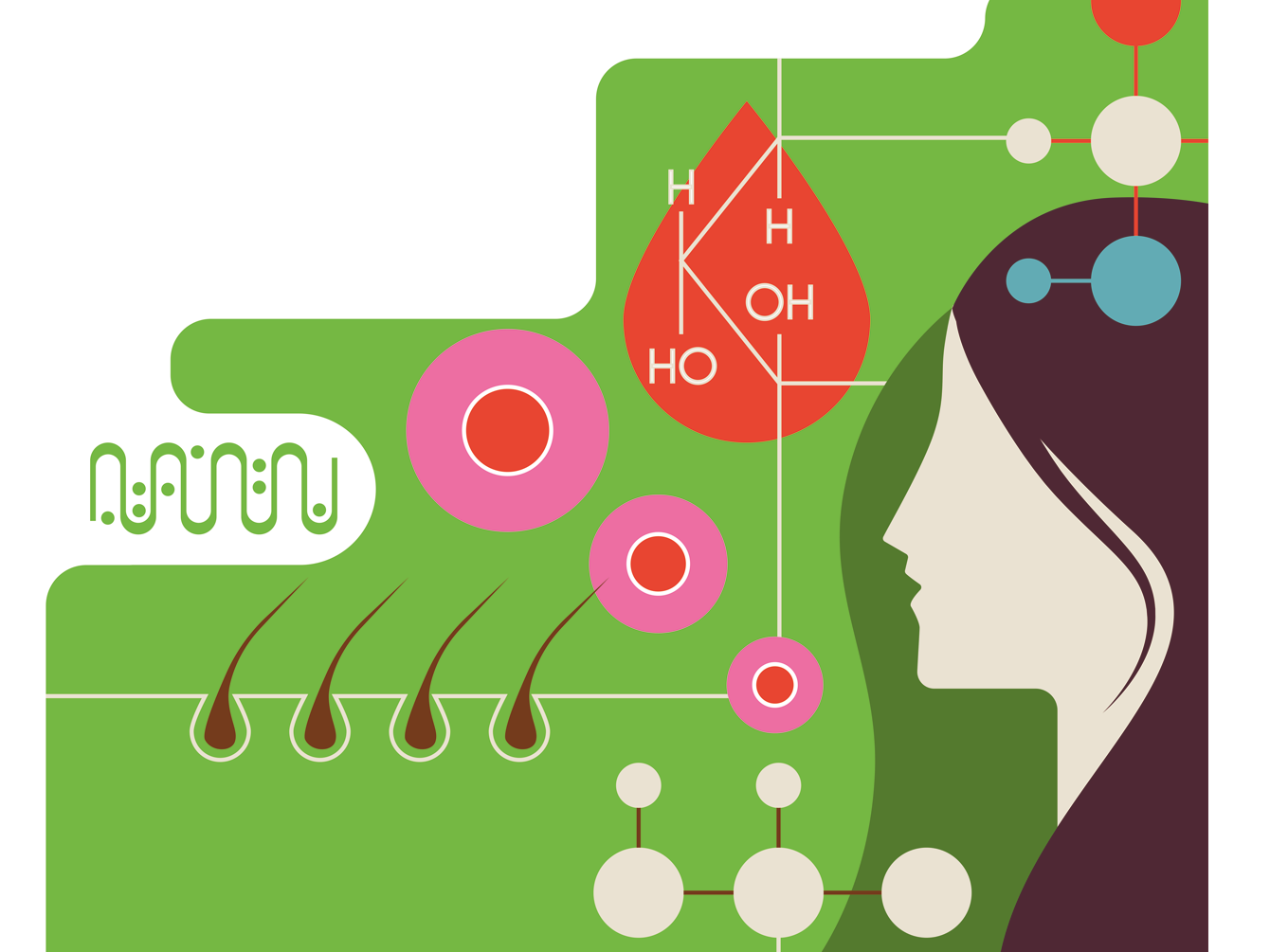 'stem cells offer hope for hair growth' medicine illustration hair colour vector simple molecule cells science editorial