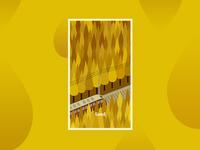 Seed-splash screen