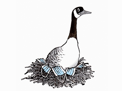 A little tale to lighten the mood during quarantine sanitizer toilet paper pen and ink beanstalk jack corona coronavirus surgical mask goose illustration