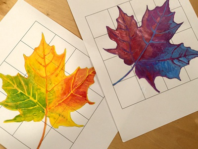 Complementary Color Leaves