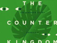 The Counter Kingdom