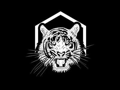 Tigers tiger sketch icon mark drawing animal illustration