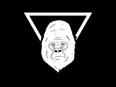 Gorilla gorilla sketch icon mark drawing animal illustration