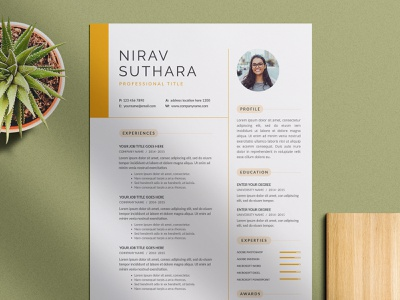 Resume flyer clean resume template minimal resume minimal clean creative design print template free cv free resume cv resume