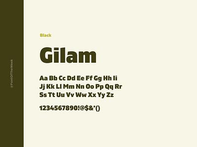 Gilam interface user experience user interface ux ui app design web design graphic design design inspiration design type inspiration free typeface free fonts google fonts typography typeface font font inspiration font of the week fotw