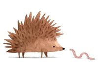 The hedgehog & the worm