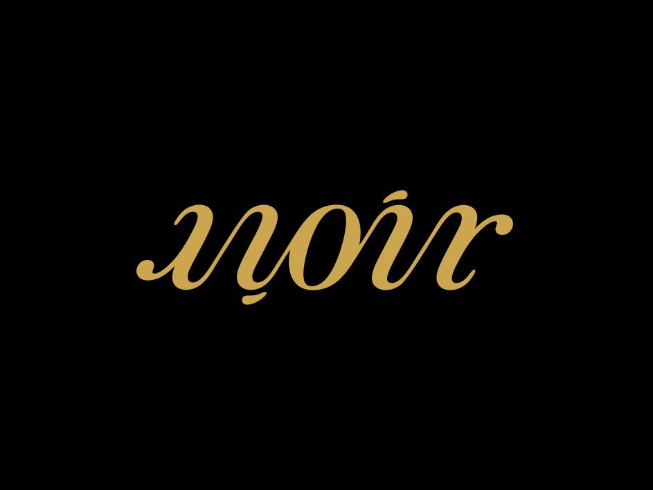 Noir Ambigram mistershot design noir ambigram logomark logotype logo