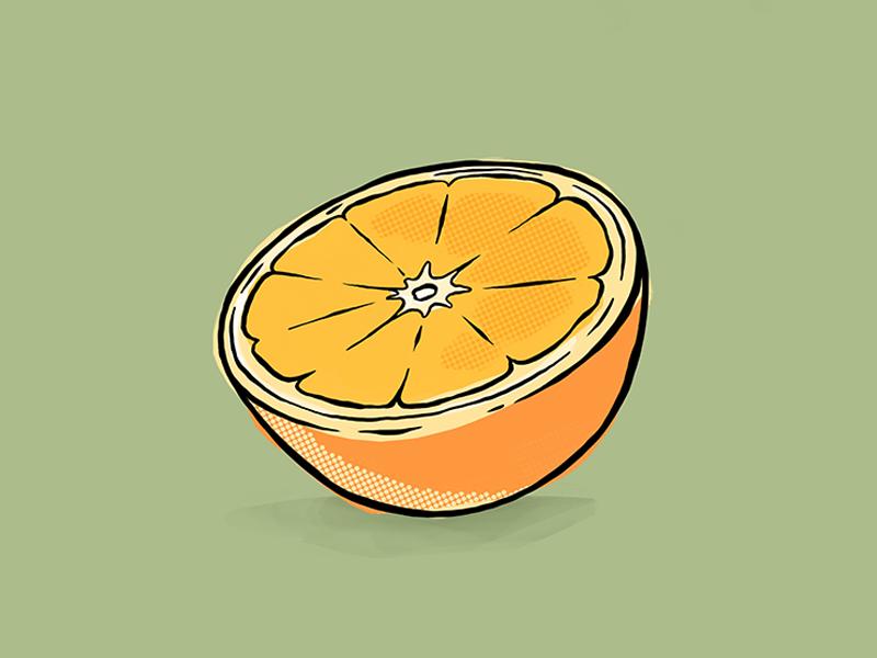 Orange halftones vintage retro illustration study fruit orange