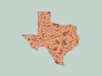 Texas Lures + Flies