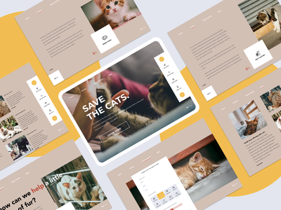 Cat charity web design pages website art webdesign creative flat clean app concept ux design ui light