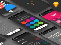 Color Palette App Freebie